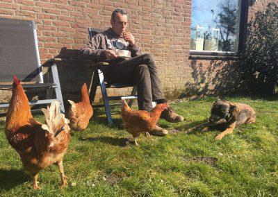 Boer met kippen